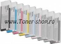 Cartus cerneala Epson C13T606300
