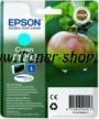Cartus cerneala Epson C13T12924010